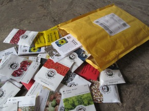 The Seeds Have Arrived!