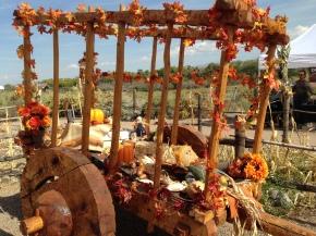 Fiesta of Cultures! October 20,2018