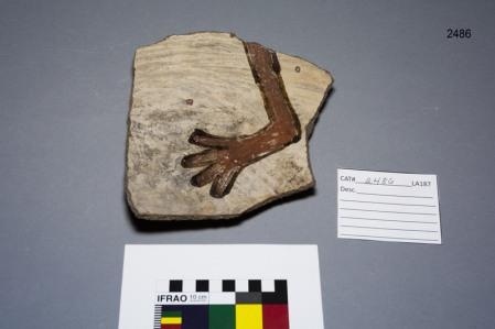 Kuaua Artifacts