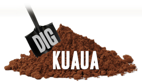 Countdown to DigKuaua!